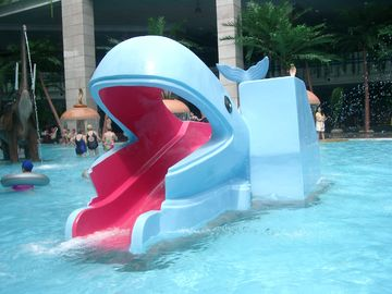 Outside Kids Water Playground Adorable Cartoon Shape Whales Slides
