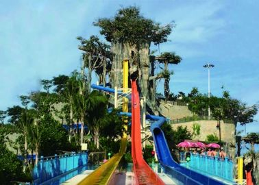 China Adult High Speed Tall Water Slides supplier